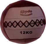 Powerteam Wall & Weight Ball 12 kg grau (#FH5012)